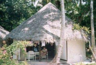 Hut picture